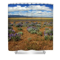 Springtime In Honey Lake Valley Shower Curtain by James Eddy