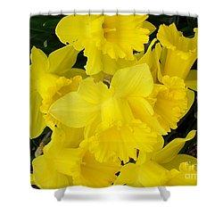 Springtime In Ireland Shower Curtain by Patrick J Murphy