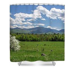 Springtime In Sugar Hill Shower Curtain