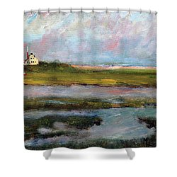 Shower Curtain featuring the painting Springtime In The Marsh by Michael Helfen