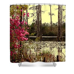 Springtime In The Swamp Shower Curtain by Susanne Van Hulst