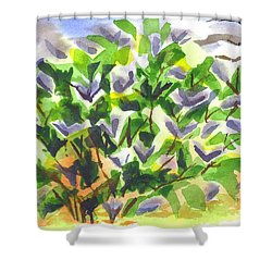 Springtime Lilac Abstraction Shower Curtain by Kip DeVore