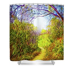Springtime Pathway Discoveries Shower Curtain