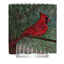 Shower Curtain featuring the painting Springtime Red Cardinal by Kathy Marrs Chandler