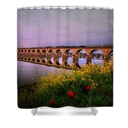 Shower Curtain featuring the photograph Springtime Reflections From Shipoke by Shelley Neff