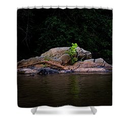 Sprout Shower Curtain