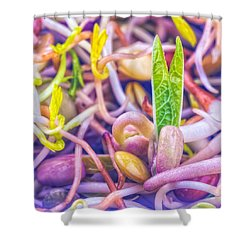 Shower Curtain featuring the photograph Sprouts Are Magic by TC Morgan