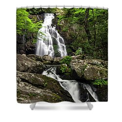 Shower Curtain featuring the photograph Spruce Flats Falls - D009919 by Daniel Dempster
