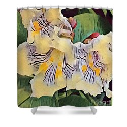 Spun Gold Shower Curtain by Kathie Chicoine
