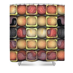 Shower Curtain featuring the digital art Square Holes Round Pegs by Wendy J St Christopher