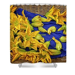 Squash Blossom Basket Shower Curtain by Dee Flouton