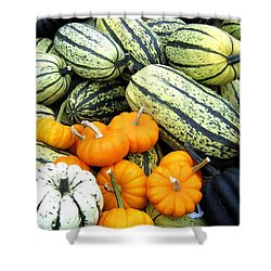 Squash Harvest Shower Curtain by Will Borden