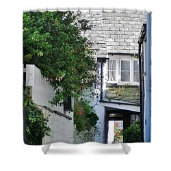 Squeeze-ee-belly Alley Shower Curtain by Richard Brookes