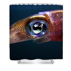 Squid Eye Shower Curtain