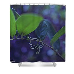 squiggle Vine Shower Curtain
