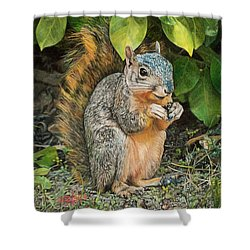 Squirrel Under Bush Shower Curtain