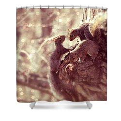 Squirrels - A Family Affair II Shower Curtain