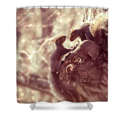 Squirrels - A Family Affair II Shower Curtain by Aurelio Zucco