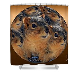 Squirrels In A Ball No. 2 Shower Curtain