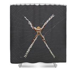 St. Andrews Cross Shower Curtain