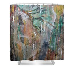 Shower Curtain featuring the painting St Francis 4 by Jocelyn Friis