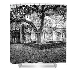 St. Helena Tabby Church Shower Curtain by Scott Hansen
