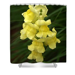 St. Johns Flower 866 Shower Curtain