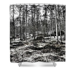 St Lawrence's Wood, Hartshill Hayes Shower Curtain