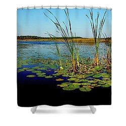 St. Mark's Lake Shower Curtain