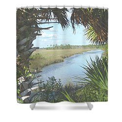 St. Mark's Marshes Shower Curtain