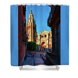 St Mary's Cathedral - Catholic Cathedral In Toledo, Chair Of The Primate Of Spain, The Main Cathedra Shower Curtain