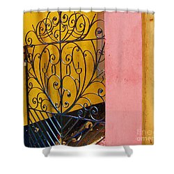 St. Thomas Gate Shower Curtain by Debbi Granruth