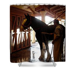 Stable Groom - 1 Shower Curtain by Linda Shafer