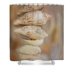 Stacked Shells Shower Curtain
