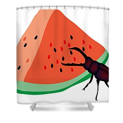 Stag Beetle Is Eating A Piece Of Red Watermelon Shower Curtain