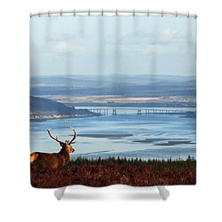 Stag Overlooking The Beauly Firth And Inverness Shower Curtain