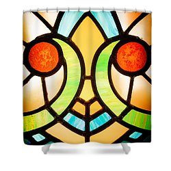 Stained Glass Detail Shower Curtain