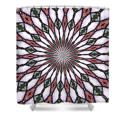 Shower Curtain featuring the photograph Stained Glass Kaleidoscope 2 by Rose Santuci-Sofranko