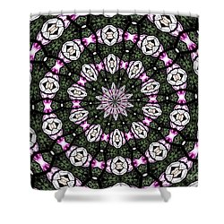 Shower Curtain featuring the photograph Stained Glass Kaleidoscope 3 by Rose Santuci-Sofranko