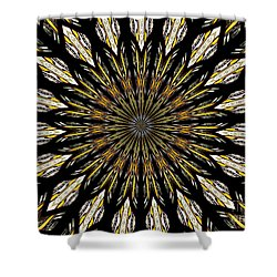 Shower Curtain featuring the photograph Stained Glass Kaleidoscope 5 by Rose Santuci-Sofranko