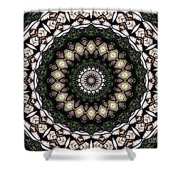Shower Curtain featuring the photograph Stained Glass Kaleidoscope 6 by Rose Santuci-Sofranko