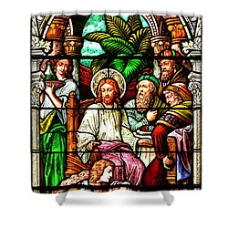 Shower Curtain featuring the photograph Stained Glass Scene 11 by Adam Jewell