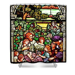 Shower Curtain featuring the photograph Stained Glass Scene 12 Crop by Adam Jewell