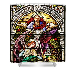 Shower Curtain featuring the photograph Stained Glass Scene 5 by Adam Jewell