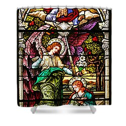 Shower Curtain featuring the photograph Stained Glass Scene 5 Crop by Adam Jewell
