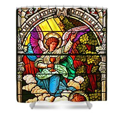 Shower Curtain featuring the photograph Stained Glass Scene 7 Crop by Adam Jewell