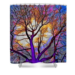 Stained Glass Sunrise Shower Curtain