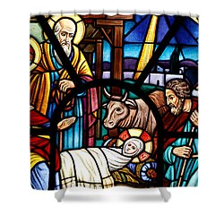 Stained Glass Window Depicting The Nativity Shower Curtain