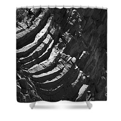 Stairs Of Time Shower Curtain