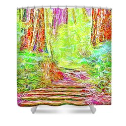 Shower Curtain featuring the digital art Stairway Through The Redwoods - Tamalpais California by Joel Bruce Wallach